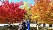 2013-10-25到2013-10-29 韓國之旅:IMAG5608.jpg