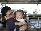 2009-04-25乳牛之家:DSC04524.JPG