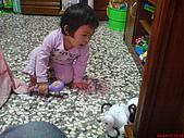 2008-04-12 郭小妞~1歲半:DSC01028.JPG