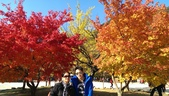 2013-10-25到2013-10-29 韓國之旅:IMAG5606.jpg
