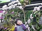 2011_02_06蘭花科技園區之旅:DSC06497.JPG