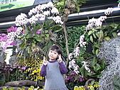 2011_02_06蘭花科技園區之旅:DSC06499.JPG