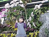 2011_02_06蘭花科技園區之旅:DSC06500.JPG