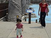 2008-04-13嘉義東石漁港:DSC01185.JPG