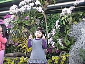 2011_02_06蘭花科技園區之旅:DSC06501.JPG