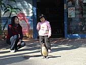2010-12-18台南學甲頑皮世界:DSC06165.JPG