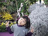 2011_02_06蘭花科技園區之旅:DSC06502.JPG