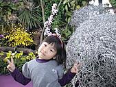 2011_02_06蘭花科技園區之旅:DSC06503.JPG