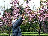中正紀念堂:P3082384.jpg