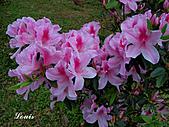 中正紀念堂:P3082421.jpg