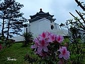 中正紀念堂:P3082434.jpg