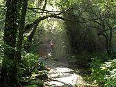 猴硐~金字碑古道、後凹古道:PC131598.jpg