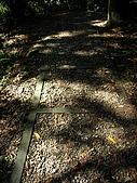 猴硐~金字碑古道、後凹古道:PC131615.jpg