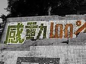 猴硐~金字碑古道、後凹古道:PC131550.jpg