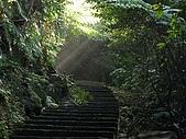 猴硐~金字碑古道、後凹古道:PC131575.jpg