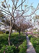 玉兔年初溪湖糖廠花開樂 201102:溪湖糖廠花開樂6-20110206.jpg