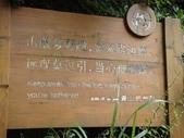 2012.08 大陸黃山行~安徽(黃山):2012.08.05 黃山~玉屏景區(好漢坡) (8).JPG