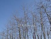 2014.01 大陸東北~遼寧(大連、瀋陽):2014.01.28~2 大連(星海灣廣場) (52).JPG