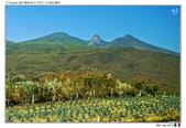 Tequila, Mexico_Mar'19:TQL02.jpg