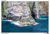 Bear Island, Norway_Jul'18:BI11.jpg