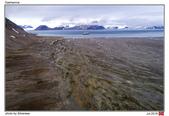 Gashamna, Svalbard_Jul'18:SVBir.jpg