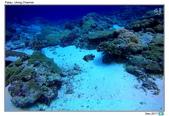 Diving in paradise, Palau_Dec'17:Palau53.jpg