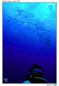 Diving in paradise, Palau_Dec'17:Palau35.jpg