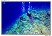 Diving in paradise, Palau_Dec'17:Palau32.jpg