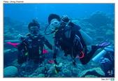 Diving in paradise, Palau_Dec'17:Palau67b.jpg