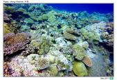 Diving in paradise, Palau_Dec'17:Palau53i.jpg