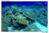 Diving in paradise, Palau_Dec'17:Palau53k.jpg