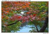 日本.海之京都~天橋立_Oct'18:AMNHDT11.jpg