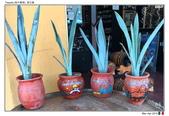 Tequila, Mexico_Mar'19:TQL14.jpg