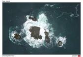 Bear Island, Norway_Jul'18:BI08.jpg