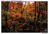 日本東北紅葉散策_Oct'07:JP009.jpg