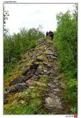 Lyngenfjorden, Norway_Jul'18:LGFJN08.jpg
