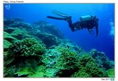 Diving in paradise, Palau_Dec'17:Palau51.jpg