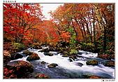日本東北紅葉散策_Oct'07:JP011.jpg