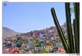 Guanajuato, Mexico_Mar'19:GNJT12.jpg