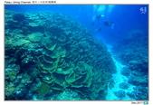 Diving in paradise, Palau_Dec'17:Palau63.jpg