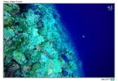 Diving in paradise, Palau_Dec'17:Palau36.jpg