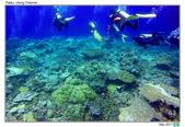 Diving in paradise, Palau_Dec'17:Palau45.jpg