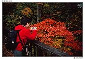 日本東北紅葉散策_Oct'07:JP013.jpg