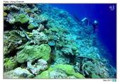 Diving in paradise, Palau_Dec'17:Palau48.jpg