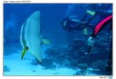 Diving in paradise, Palau_Dec'17:Palau33.jpg