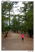 日本.海之京都~天橋立_Oct'18:AMNHDT20.jpg