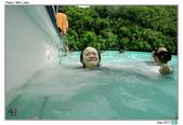 Diving in Palau_Dec'17:PalauH5.jpg