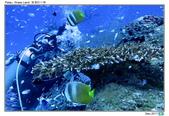 Diving in paradise, Palau_Dec'17:Palau23.jpg