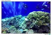 Diving in paradise, Palau_Dec'17:Palau46.jpg