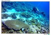 Diving in paradise, Palau_Dec'17:Palau56.jpg
